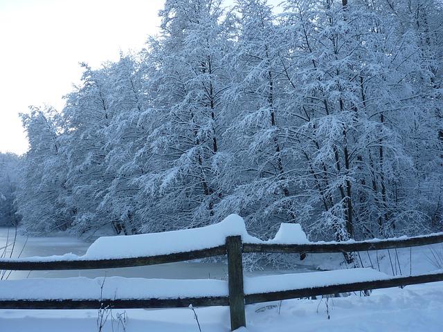 Real Snow Began After Dark >> Snow Flatlander Faith