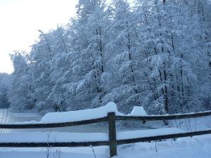 winter-4290_640