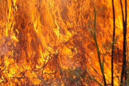 burning-grass-1165823_640