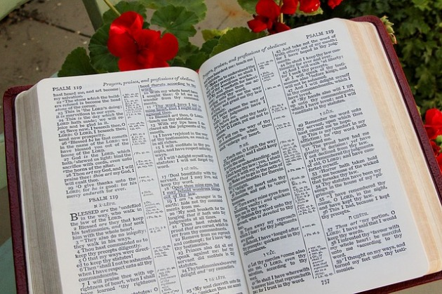 bible-1310882_640