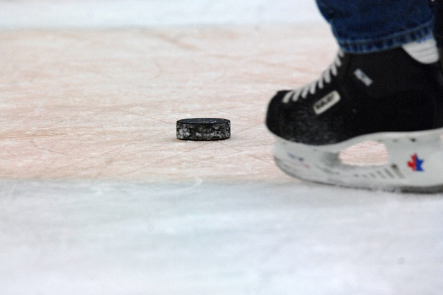 hockey-puck-584978_640